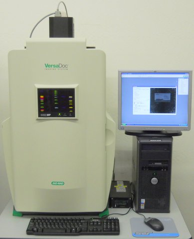 Biorad versadoc 5000mp gel photo documentation system for Gel documentation system bio rad price