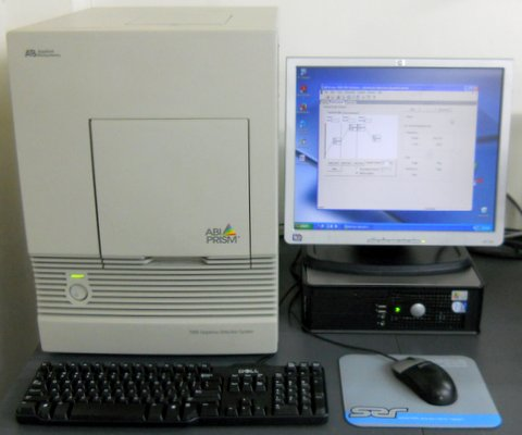 7000 Real-Time PCR System